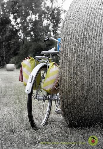 Fahrrad Produktdesign